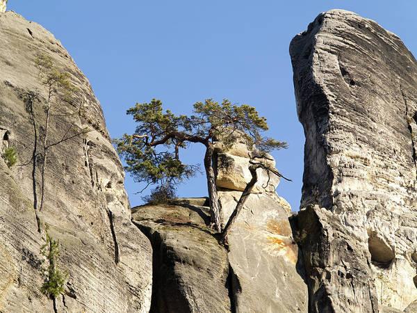 Tourism Wall Art - Photograph - Bohemian Paradise - Rocks by Michal Boubin