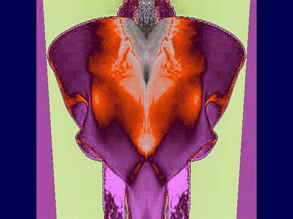 Digital Art - Bold Jacket by Mary Russell