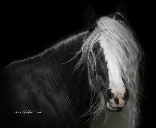 Photograph - Bombshell by Terry Kirkland Cook