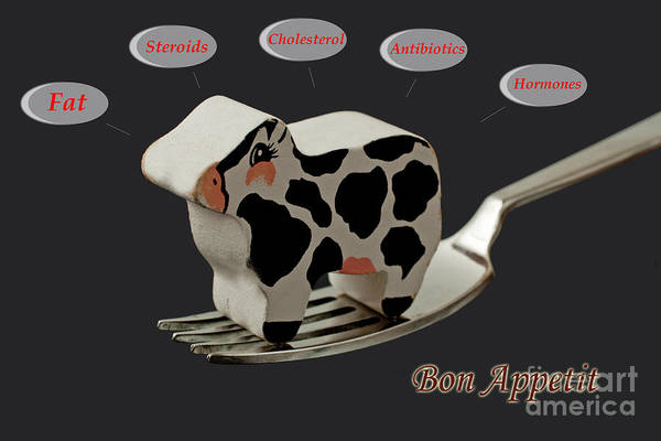 Photograph - Bon Appetit by Gunter Nezhoda