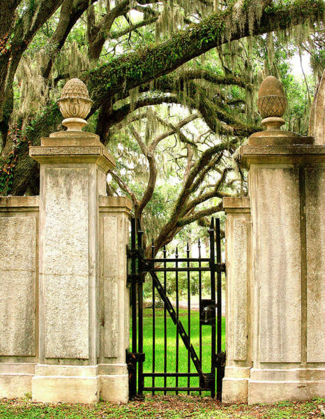 Cemetaries Wall Art - Photograph - Bonaventure Cemetery Gate Savannah Ga by William Dey