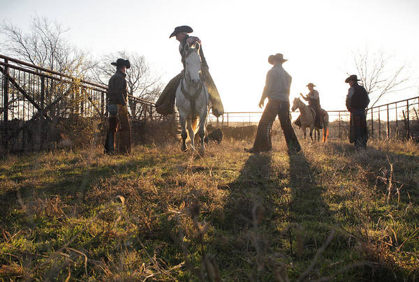 Photograph - Bond Cowboys by Diane Bohna