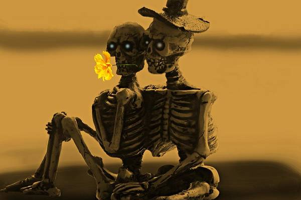 Photograph - Bones In Love  by David Dehner