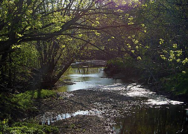 Photograph - Bonne Femme Creek by Cricket Hackmann
