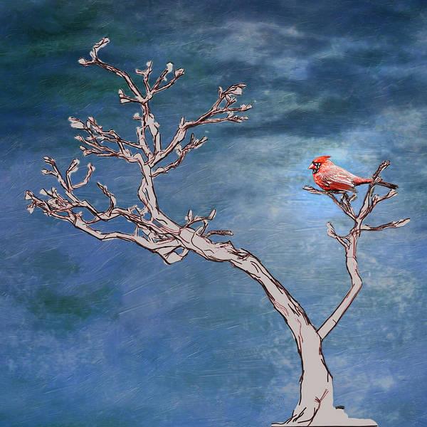 Bonsai Tree Digital Art - Bonsai Cardinal by John Haldane