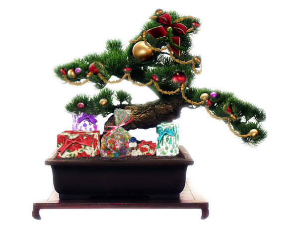Bonsai Tree Digital Art - Bonsai Christmas Tree by Gravityx9  Designs