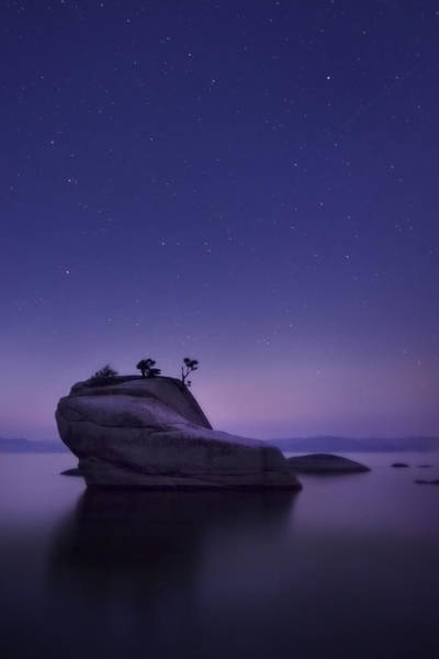 Pollution Photograph - Bonsai Island by Sean Foster