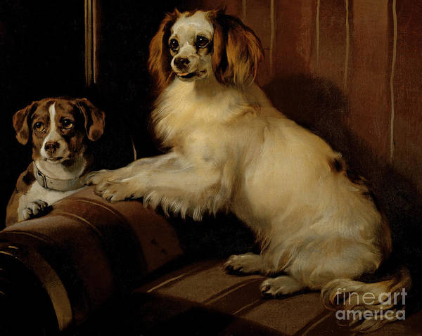 Dogs Painting - Bony And Var by Sir Edwin Landseer