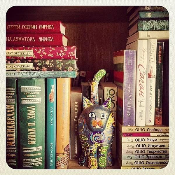 Wall Art - Photograph - Book #book #bookshelf #cat by Marina Boitmane