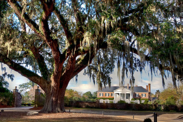Pleasant Photograph - Boone Hall Mansion by Walt  Baker
