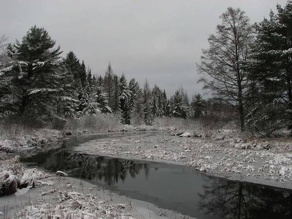 Photograph - Boot Creek Ice Over by Dale Kauzlaric