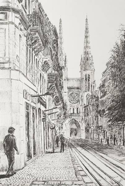 Grape Drawing - Bordeaux by Vincent Alexander Booth
