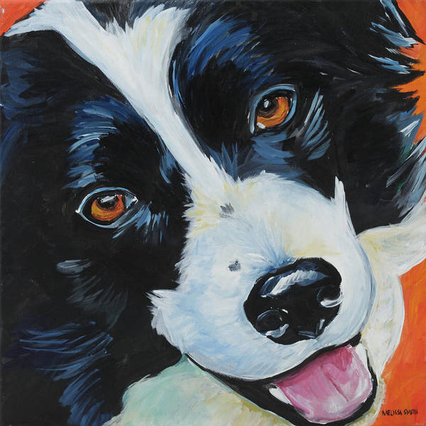 Border Collie Painting - Border Collie by Melissa Smith