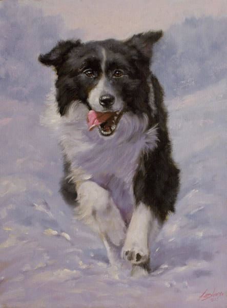 Painting - Border Collie Portrait II by John Silver
