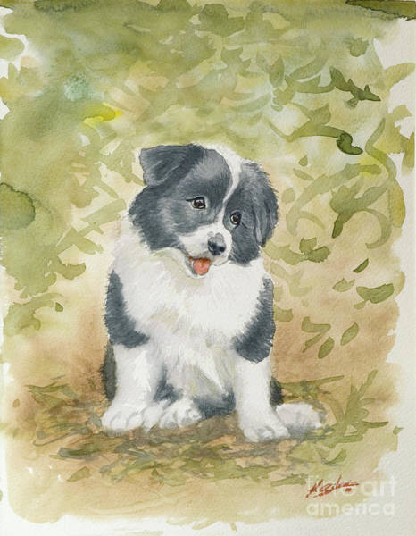 Painting - Border Collie Pup Portrait II by John Silver