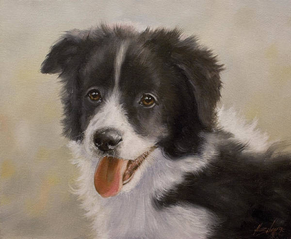 Painting - Border Collie Pup Portrait Iv by John Silver