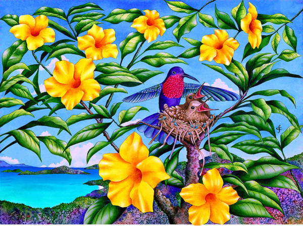 Wall Art - Photograph - Born In Paradise by MGL Meiklejohn Graphics Licensing