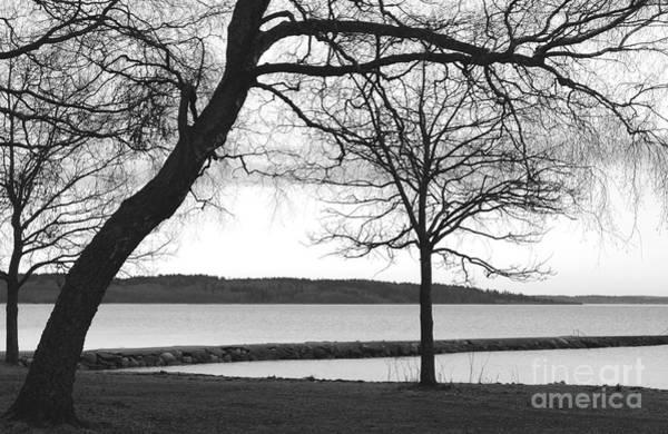Photograph - Borrestranda by Randi Grace Nilsberg