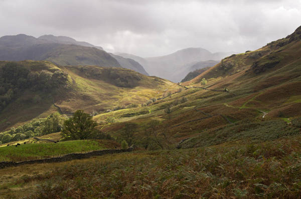 Photograph - Borrowdale Towards Great Gable by Pete Hemington