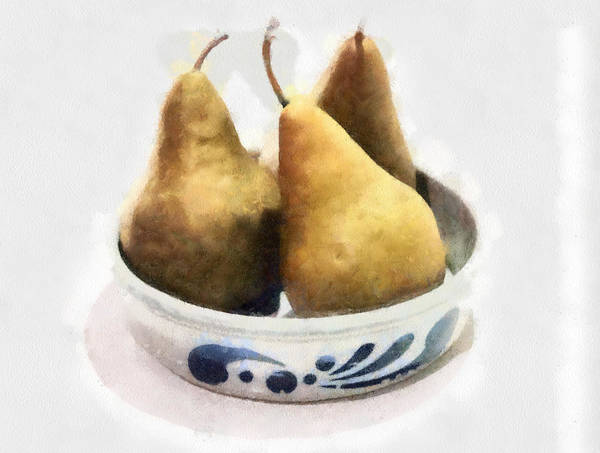 Photograph - Bosc Pears by Gerry Bates