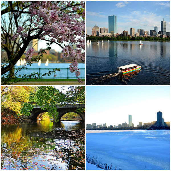 Photograph - Boston Charles River Four Seasons Collage by Toby McGuire