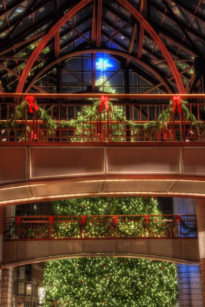 Photograph - Boston Christmas Tree by Joann Vitali