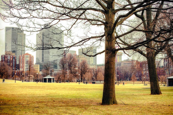 Photograph - Boston Common by Robert Clifford