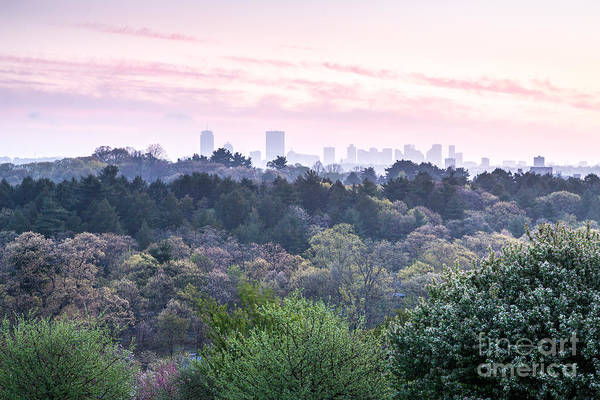 Photograph - Boston Skyline From Peters Hill by Susan Cole Kelly