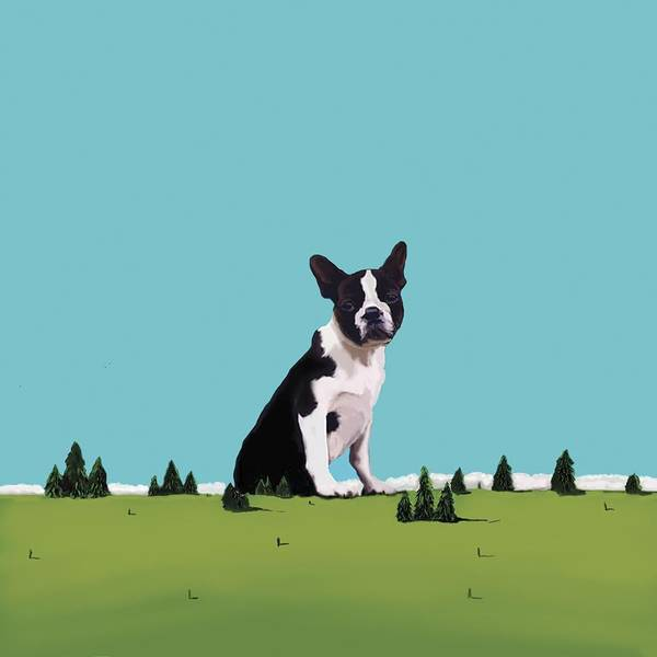 Seat Painting - Boston Terrier by Marjorie Weiss