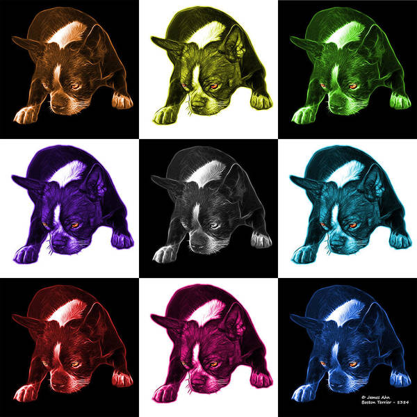 Mixed Media - Boston Terrier Art - 8384 - V1 - M by James Ahn