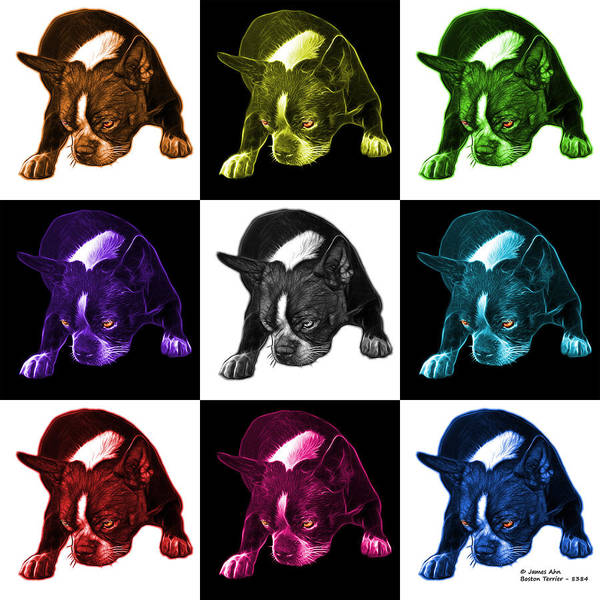 Mixed Media - Boston Terrier Art - 8384 - V2 - M by James Ahn