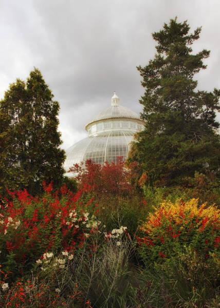 Photograph - Botanical Autumn by Jessica Jenney