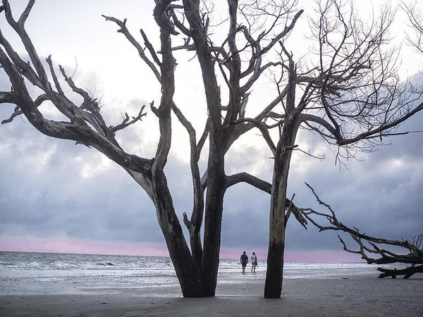 Photograph - Botany Bay Beach Walk by Jo Ann Tomaselli