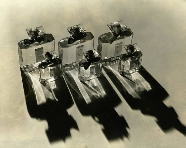 Side View Photograph - Bottles Of Lucretia Allen Perfume by Lusha Nelson