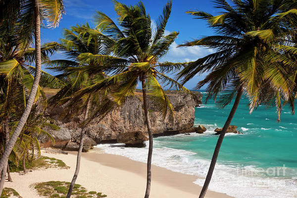 Photograph - Bottom Bay Beach In Barbados by Brian Jannsen