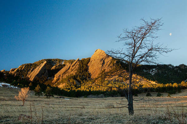 Photograph - Boulder Colorado Flatirons Early Morning Light by James BO Insogna
