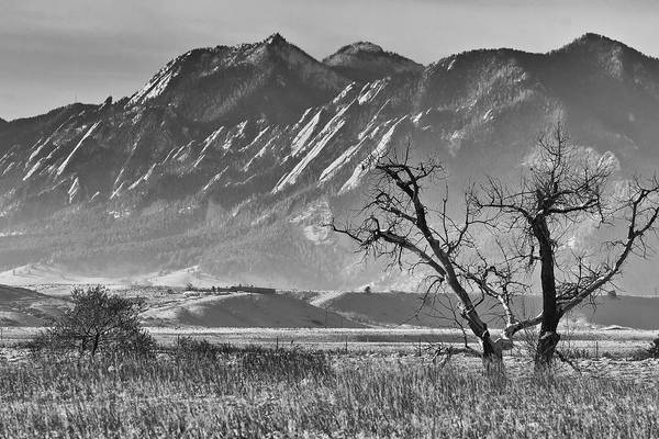 Photograph - Boulder Colorado Snowy Front Range View In Black And White by James BO Insogna