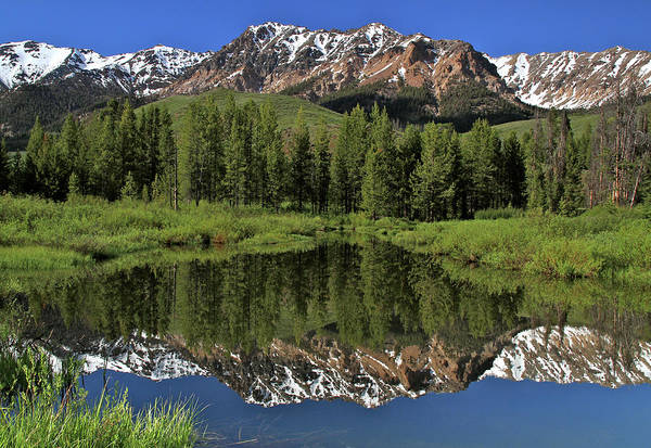 Photograph - Boulder Mountain Reflection Sun Valley Idaho by Ed  Riche