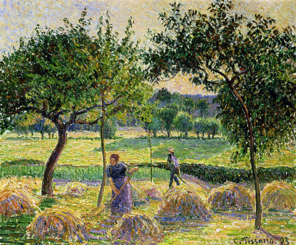 Wall Art - Painting - Bountiful Harvest, 1893 by Camille Pissarro