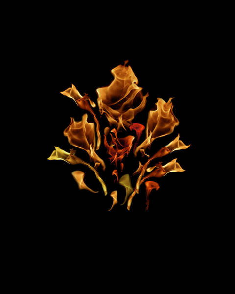 Photograph - Bouquet Of Fire  by Wes Jimerson