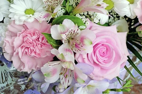Alstroemeria Photograph - Bouquet Of Flowers by D C Robinson