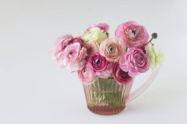 Vase Of Flowers Photograph - Bouquet Of  Pink Ranunculus by Elin Enger