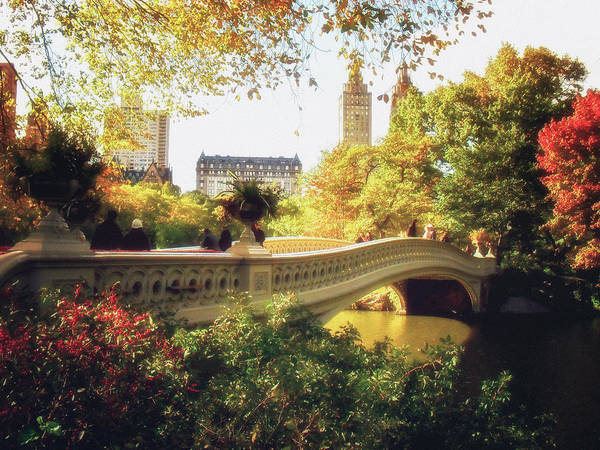 Urban Nature Photograph - Bow Bridge - Autumn - Central Park by Vivienne Gucwa