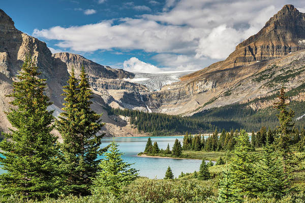 Bow River Wall Art - Photograph - Bow Lake And Glacier, Banff National by Witold Skrypczak