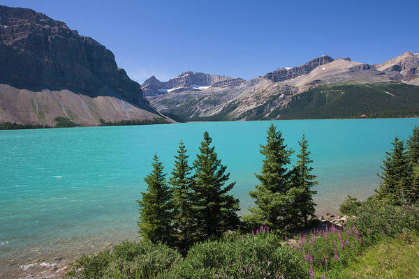 Bow River Wall Art - Photograph - Bow Lake, Banff National Park, Alberta by Altrendo Nature