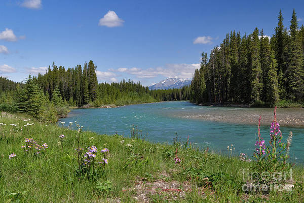 Photograph - Bow River Flats by Charles Kozierok