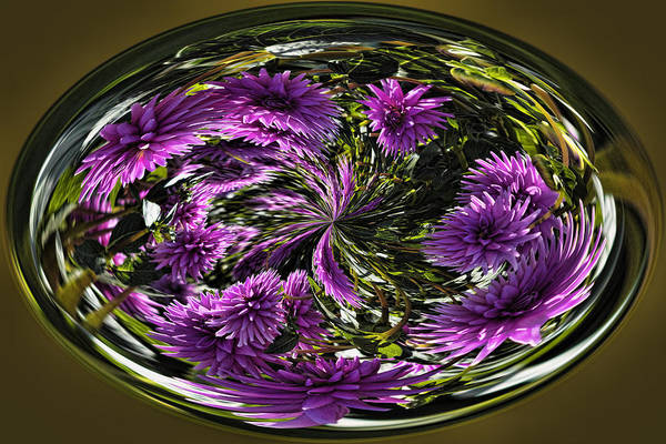 Photograph - Bowl Of Dahlias by Wes and Dotty Weber