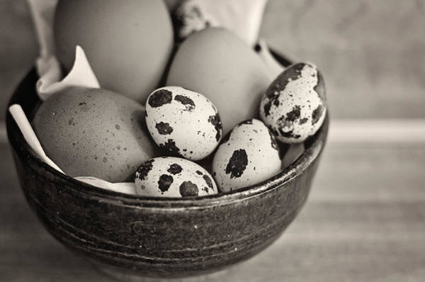 Photograph - Bowl Of Eggs Bw by Heather Applegate