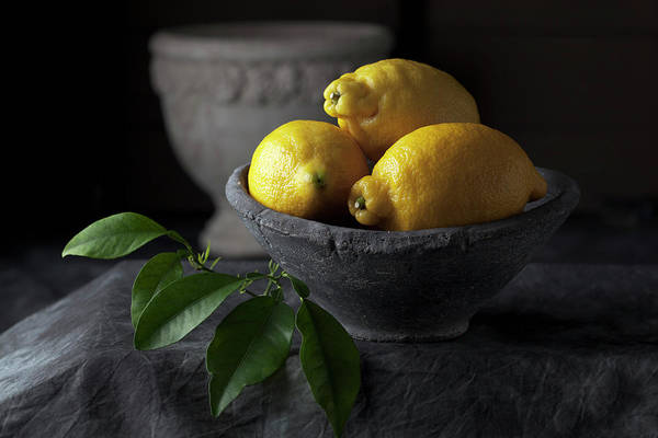 Lemon Photograph - Bowl Of Lemons With Leaves, Close Up by Westend61