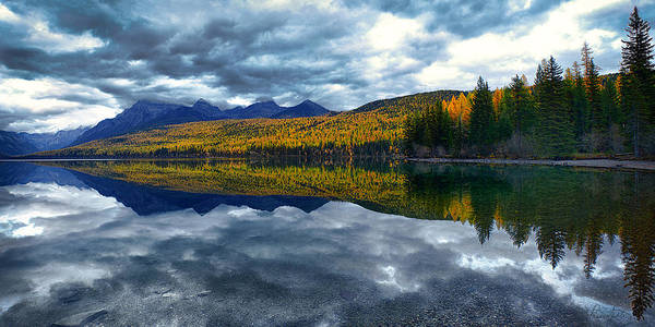 Photograph - Bowman Lake Quietude by Renee Sullivan